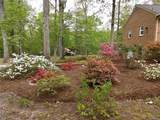 11306 Hanover Courthouse Road - Photo 48