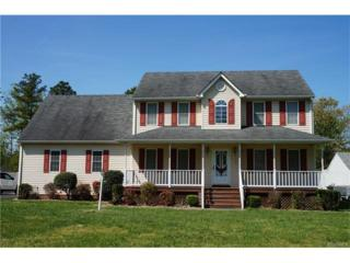 5417 Willow Oak Drive, Prince George, VA 23875 (#1717123) :: Resh Realty Group