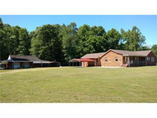10199 James River Drive, Hopewell, VA 23860 (#1718267) :: Resh Realty Group