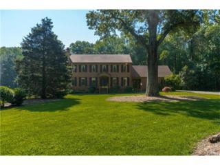 14110 Hickory Oaks Lane, Ashland, VA 23005 (#1718694) :: Resh Realty Group