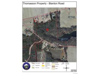 13614 Blanton Road, Ashland, VA 23005 (#1718720) :: Resh Realty Group