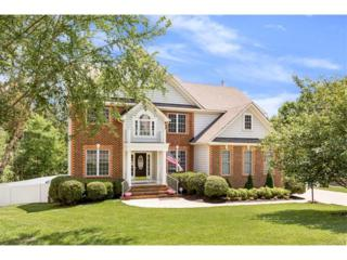 8525 Hampton Valley Drive, Chesterfield, VA 23832 (#1718928) :: Resh Realty Group