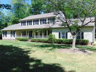 115 Barrows Mount, Williamsburg, VA 23185 (#1719067) :: Resh Realty Group
