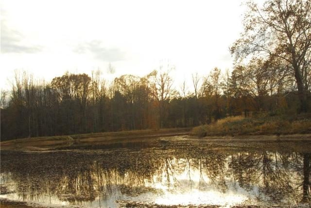 1000 E River Road, Columbia, VA 23038 (#1828959) :: Abbitt Realty Co.