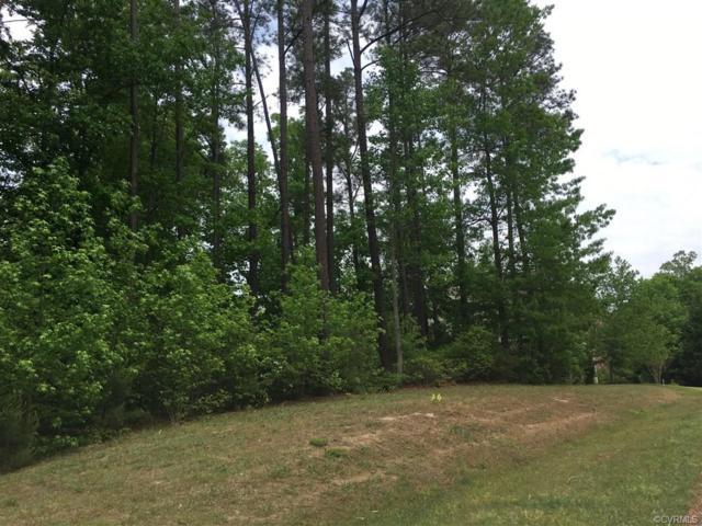 3119 Windy Branch Drive, Toano, VA 23168 (#1829940) :: Abbitt Realty Co.
