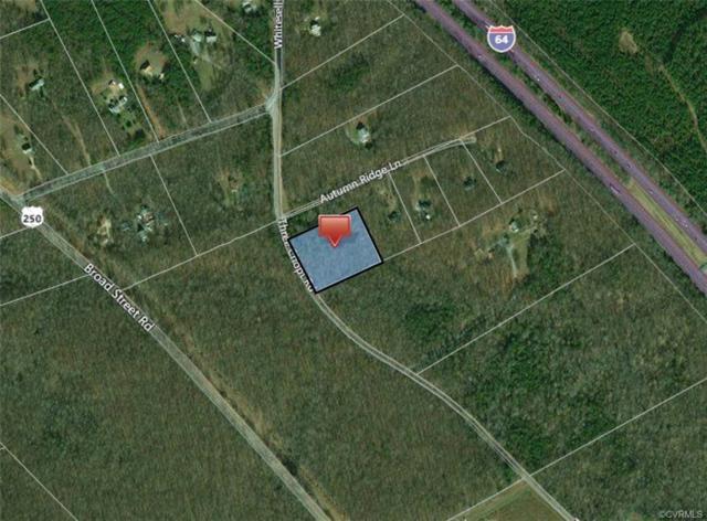 0 Three Chopt Road, Goochland, VA 23093 (#1830915) :: Abbitt Realty Co.