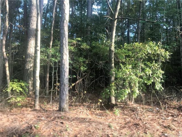0 Horn Harbor Avenue, New Point, VA 23138 (MLS #1832938) :: Chantel Ray Real Estate