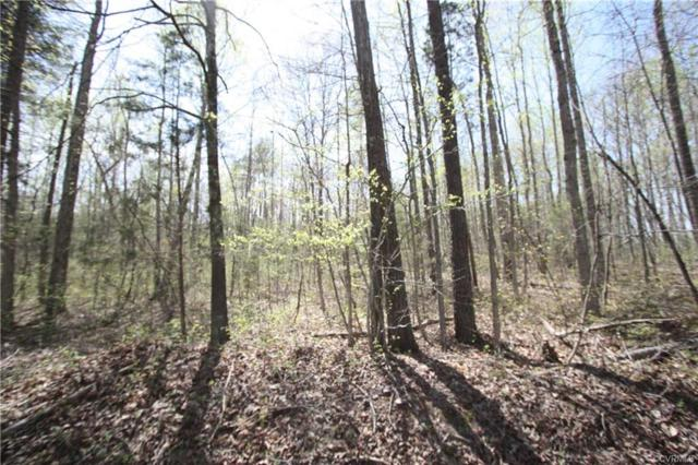 Lot 4 Youngstown Road, Goochland, VA 23063 (MLS #1833407) :: EXIT First Realty