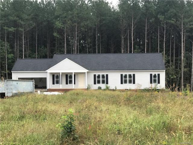 2972 Pineview Drive, Powhatan, VA 23139 (#1833927) :: Abbitt Realty Co.