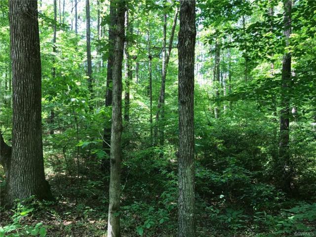13312 Stanleys Mill Trail, Glen Allen, VA 23059 (#1835641) :: Abbitt Realty Co.