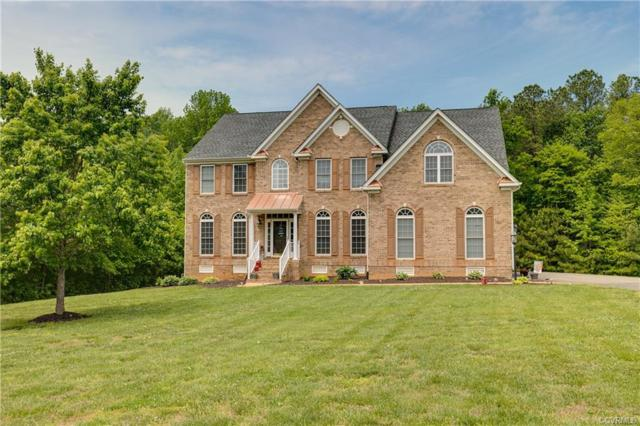 14966 Patrick Meadows Way, Hanover, VA 23192 (MLS #1835775) :: The RVA Group Realty