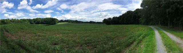 0 Pony Farm Road, Maidens, VA 23102 (#1836839) :: Green Tree Realty