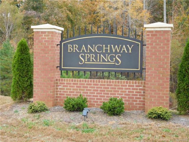 2248 Branch Springs Court, Powhatan, VA 23139 (#1838112) :: Abbitt Realty Co.