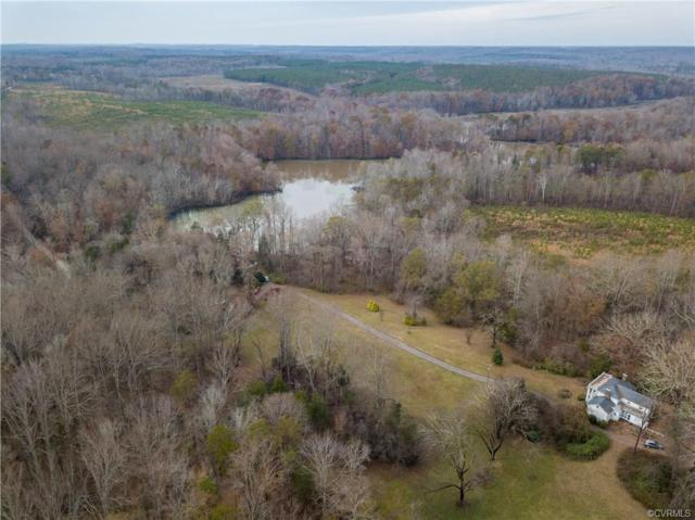 1065 Sports Lake Road, New Canton, VA 23123 (MLS #1839048) :: RE/MAX Action Real Estate