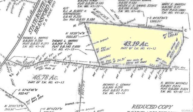 0000 Bransford Rd, Arvonia, VA 23004 (MLS #1839049) :: Small & Associates