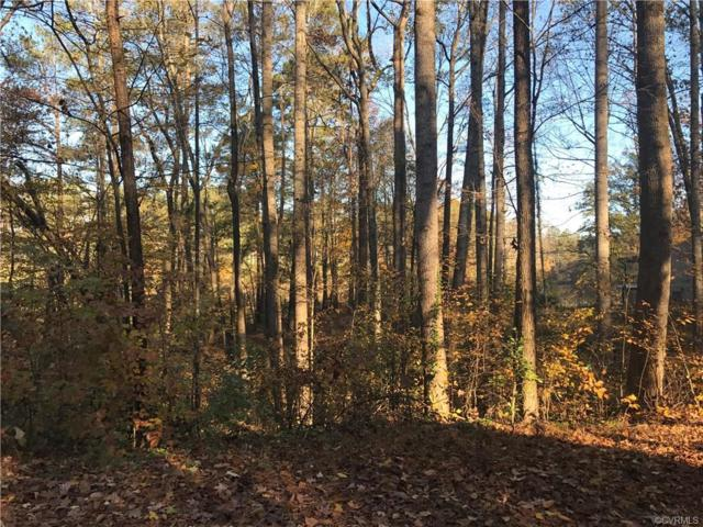 0 Shoreline Drive, New Kent, VA 23141 (MLS #1839958) :: The RVA Group Realty