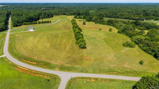 739 Appomattox Trace Road, Powhatan, VA 23139 (#1901488) :: Abbitt Realty Co.