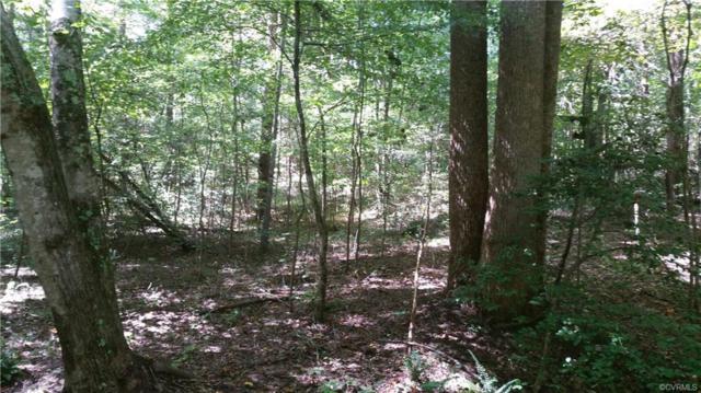 2.59 Acres Bent Creek Road, Amelia, VA 23002 (MLS #1901731) :: The RVA Group Realty