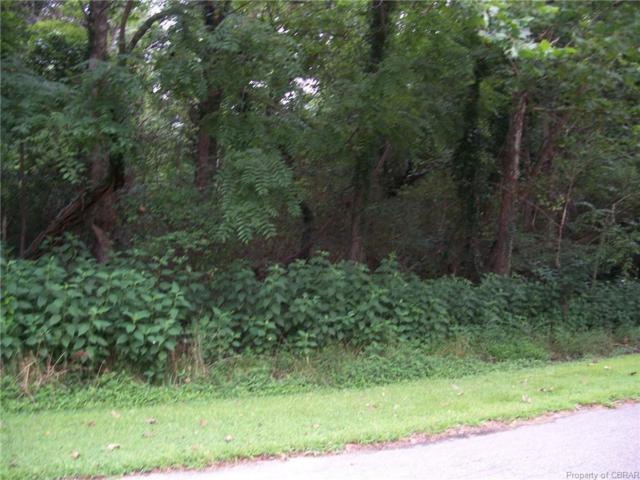 Heron Drive Heron Drive, Locust Hill, VA 23092 (MLS #1903151) :: Village Concepts Realty Group