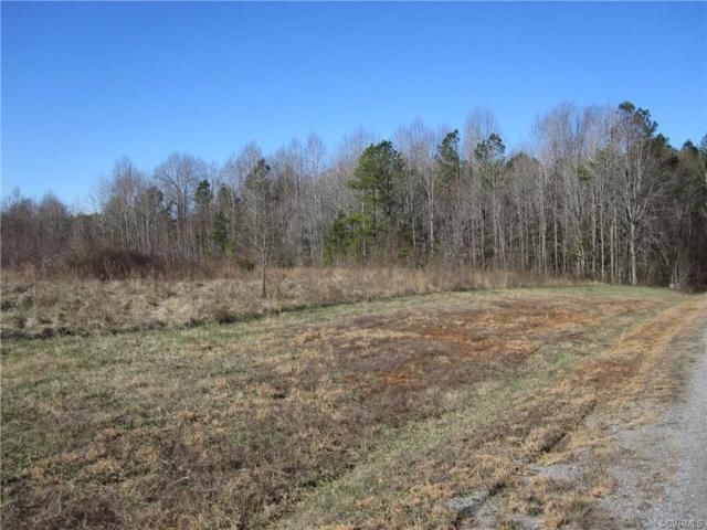 2 Mill Branch Way, Bumpass, VA 23024 (#1903421) :: Abbitt Realty Co.