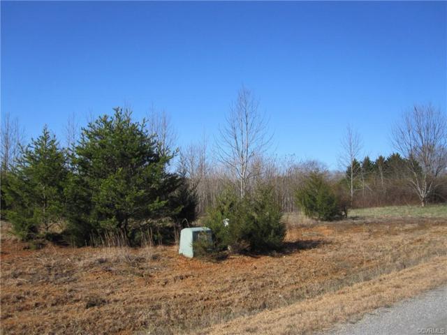 1 Mill Branch Way, Bumpass, VA 23024 (#1903423) :: Abbitt Realty Co.