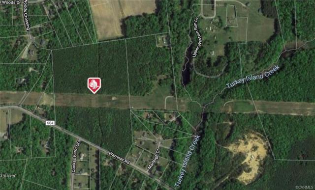 8201 Warriner Road, Henrico, VA 23231 (MLS #1905275) :: The RVA Group Realty