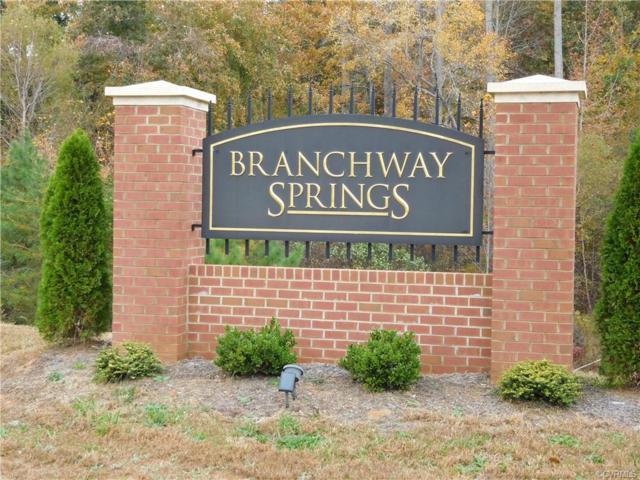 02245 Branch Springs Road, Powhatan, VA 23139 (#1908074) :: Abbitt Realty Co.
