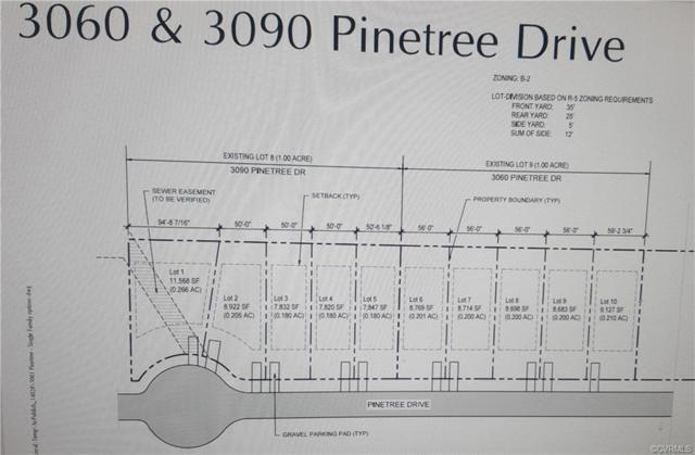 3060 Pinetree Drive, Petersburg, VA 23803 (#1908471) :: 757 Realty & 804 Homes