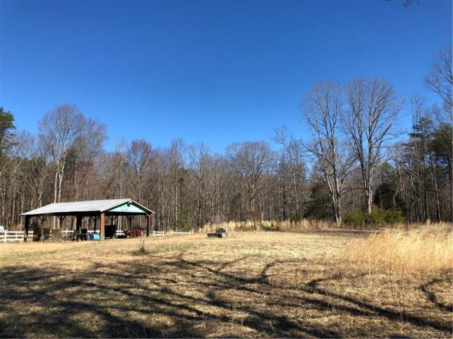 365 Ebenezer Road, Mineral, VA 23117 (MLS #1908729) :: RE/MAX Action Real Estate