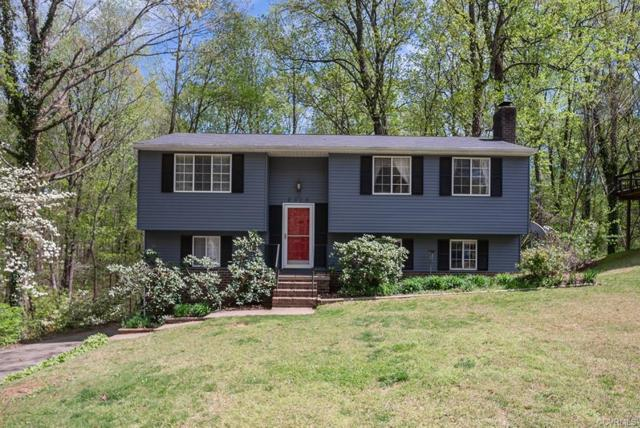 2313 Dragonfly Ln, North Chesterfield, VA 23235 (#1910958) :: 757 Realty & 804 Homes
