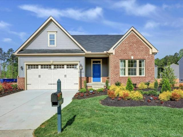 5454 Bison Ford Drive, Chesterfield, VA 23234 (#1911896) :: Abbitt Realty Co.
