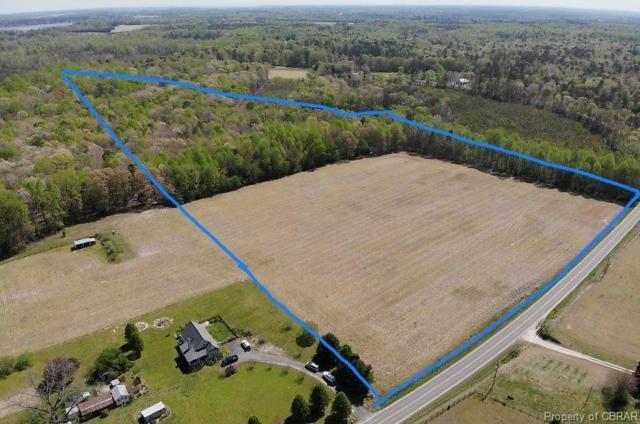 21 Acres Dutton, Dutton, VA 23061 (#1913084) :: Abbitt Realty Co.