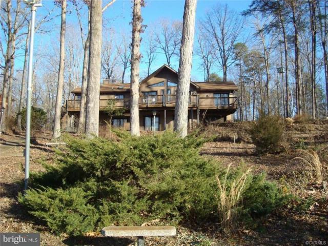 995 Windwood Coves Boulevard, Mineral, VA 23117 (#1914831) :: Abbitt Realty Co.