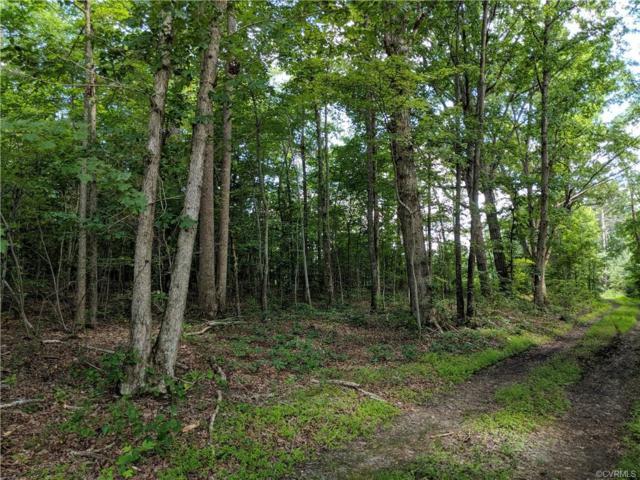 10.9 Acres Amelia Springs Road, Jetersville, VA 23083 (#1920370) :: 757 Realty & 804 Homes