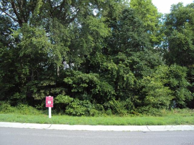 22191 Jordan Heights Drive, Dinwiddie, VA 23803 (MLS #1920392) :: HergGroup Richmond-Metro