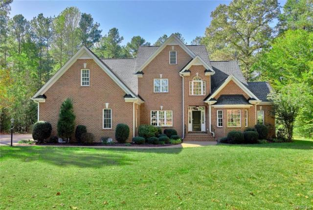13543 River Otter Court, Chesterfield, VA 23838 (MLS #1922964) :: EXIT First Realty