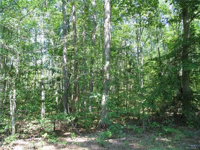 TBD Mulholland Drive, Lawrenceville, VA 23868 (MLS #1923725) :: Treehouse Realty VA