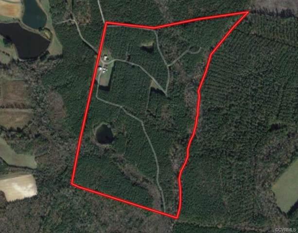 3166 Grassy Pond Road, Emporia, VA 23847 (#1924419) :: Abbitt Realty Co.