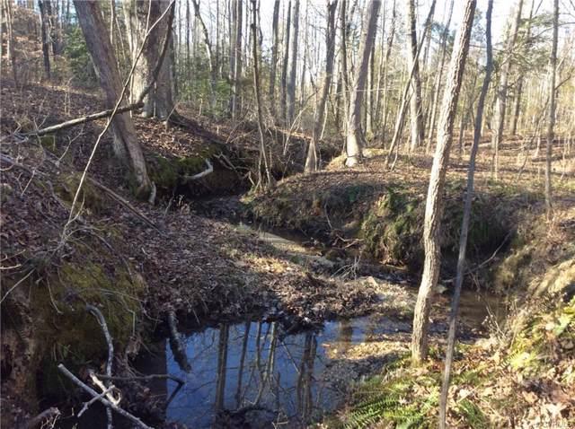 11.657 acres Genito Road, Amelia, VA 23002 (MLS #1927082) :: HergGroup Richmond-Metro