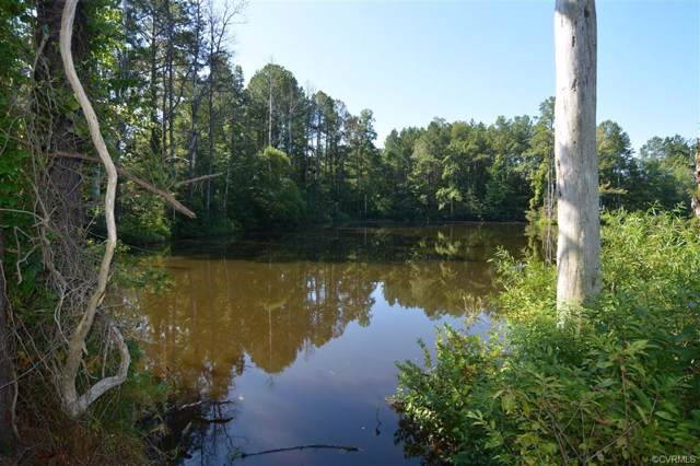 96-Acres Courthouse Road, Dinwiddie, VA 23841 (MLS #1927643) :: The RVA Group Realty