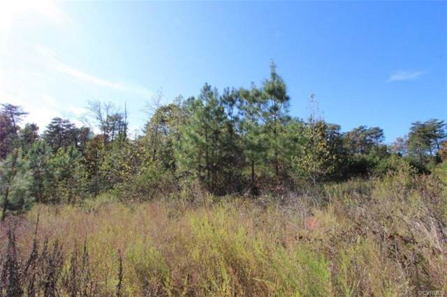 Lot 4 Pineside Four, Farmville, VA 23901 (MLS #1934371) :: Small & Associates