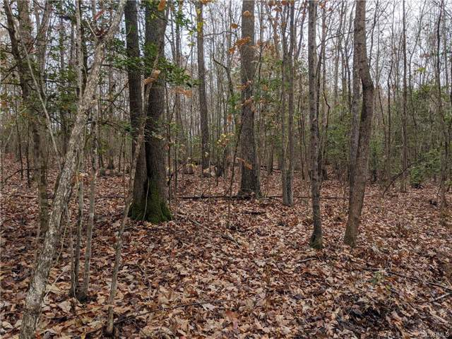 30.9 Acres Dennisville Road, Amelia Courthouse, VA 23002 (MLS #1937788) :: HergGroup Richmond-Metro