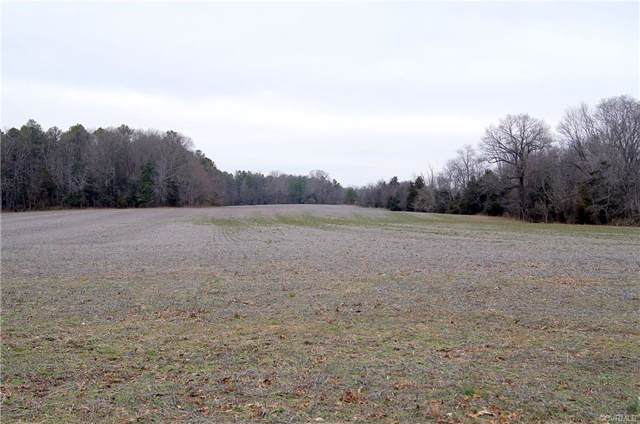 13280 Tower Road, Doswell, VA 23047 (MLS #2002218) :: Small & Associates