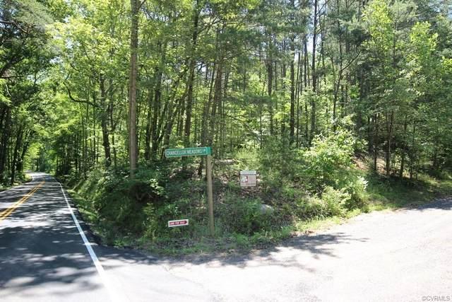 11321 Chancellor Meadows Lane Road, Locust Grove, VA 22508 (MLS #2007132) :: Treehouse Realty VA