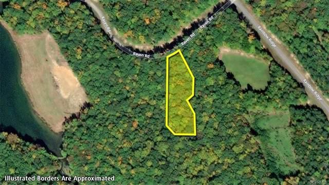 Lot 123 Raven Road, Bumpass, VA 23024 (MLS #2011038) :: EXIT First Realty