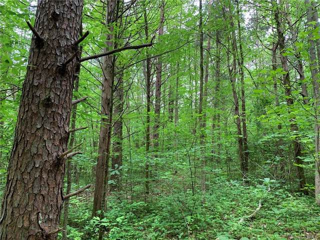0 Stavemill Rd, Powhatan, VA 23139 (MLS #2015582) :: EXIT First Realty