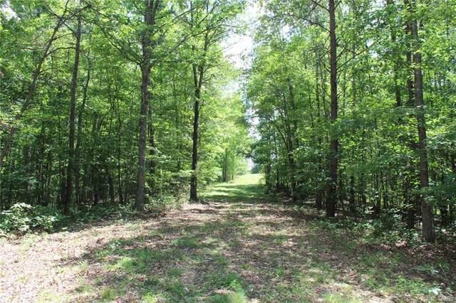 00 Hundley Branch Road, Scottsville, VA 24590 (#2020618) :: Abbitt Realty Co.