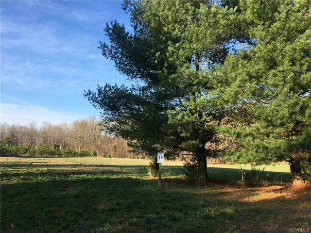 15195 Whitetail Hollow Court, Doswell, VA 23047 (MLS #2029336) :: Treehouse Realty VA