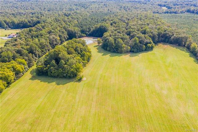 1126 Schroeder Road, Powhatan, VA 23139 (MLS #2030072) :: Keeton & Co Real Estate