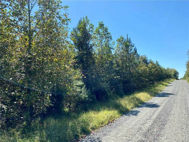 Lot 3 Cary's Creek Road, Fork Union, VA 23055 (MLS #2030353) :: The Redux Group